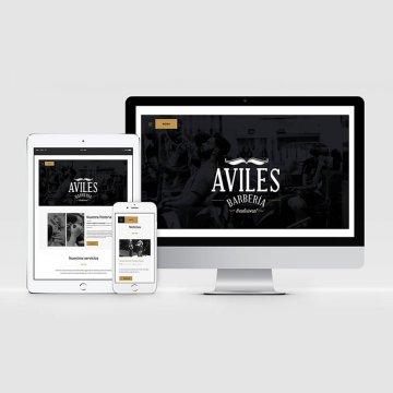 pagina-web-aviles