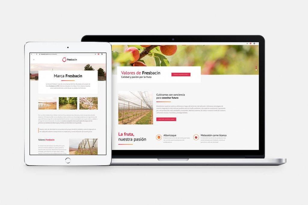 fresbacin-pagina-web